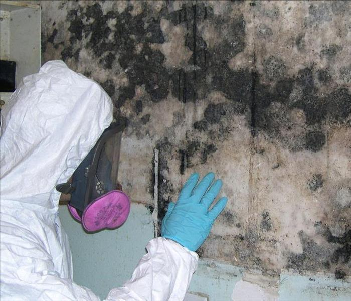 Mold Remediation Signs that you may need SERVPRO of Fairfield - MOLD