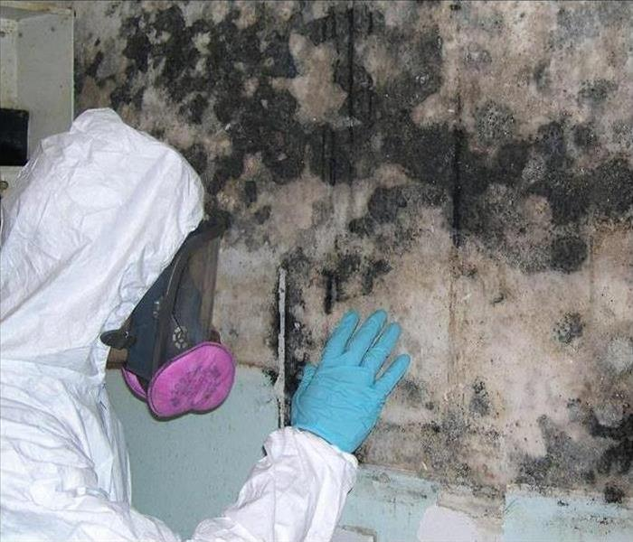 Mold Remediation Signs that you may need SERVPRO of Fairfield-MOLD