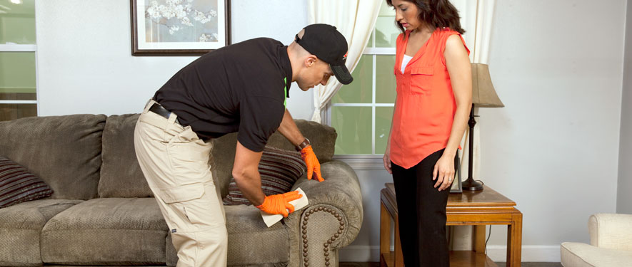 Fairfield, CA carpet upholstery cleaning